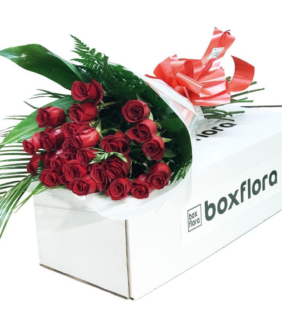 0793d2e1bb8b3 Ramo de 25 Rosas Rojas ♡ con Envío Gratis Boxflora