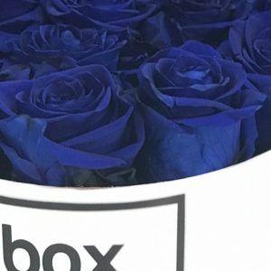 rosas-eternas-azules