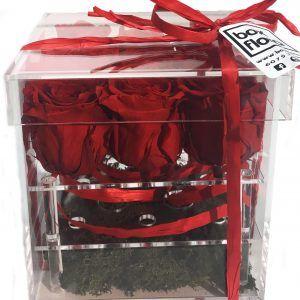 rosas-eternas-roja-en-caja-metacrilato