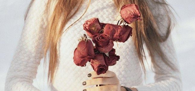 Cómo conservar rosas