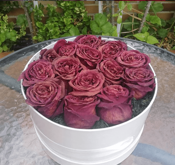 Como secar rosas en caja