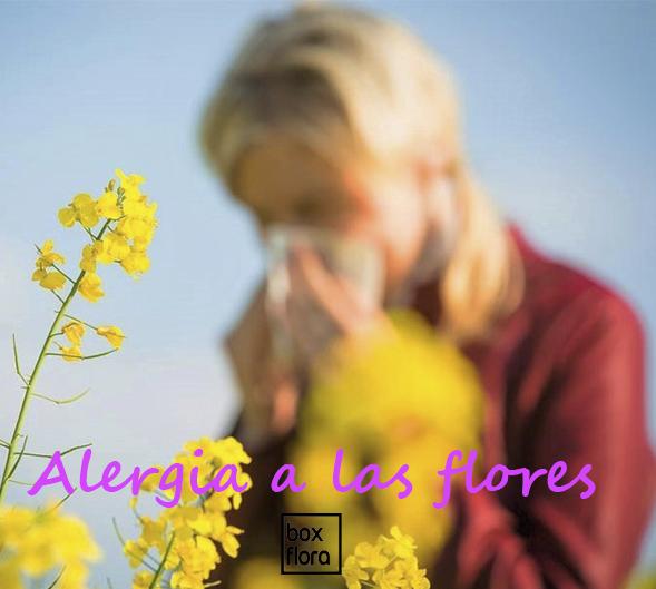 alergias-flores-persona