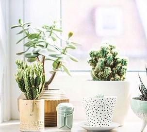 5-consejos-de-decoración-para-tener-una-casa-bonita