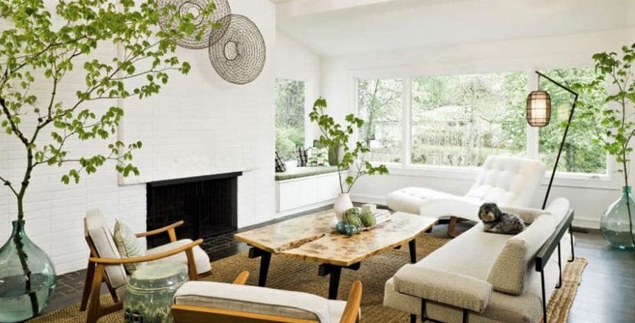 Consejos-para-la-decoración-de-plantas