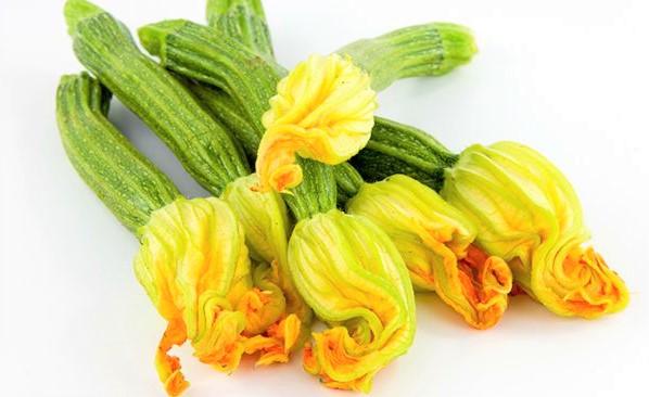 flor-de-calabaza-comestible