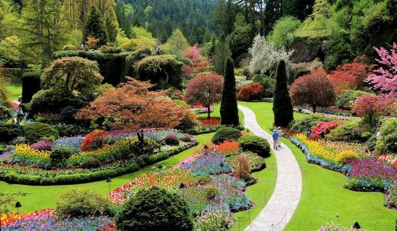 jardin-sin-fronteras