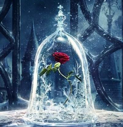 rosa-bella-y-bestia-