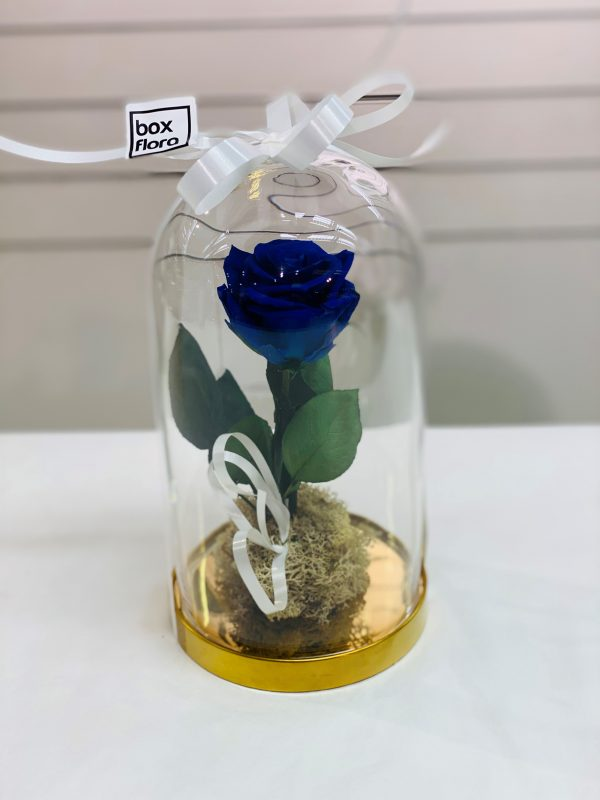 rosa-bella-y-bestia-azul