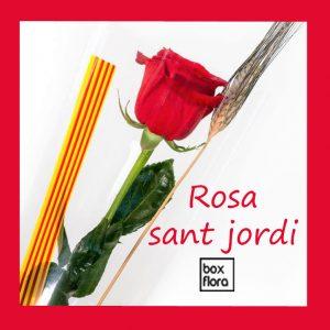rosas-sant-jordi-2021